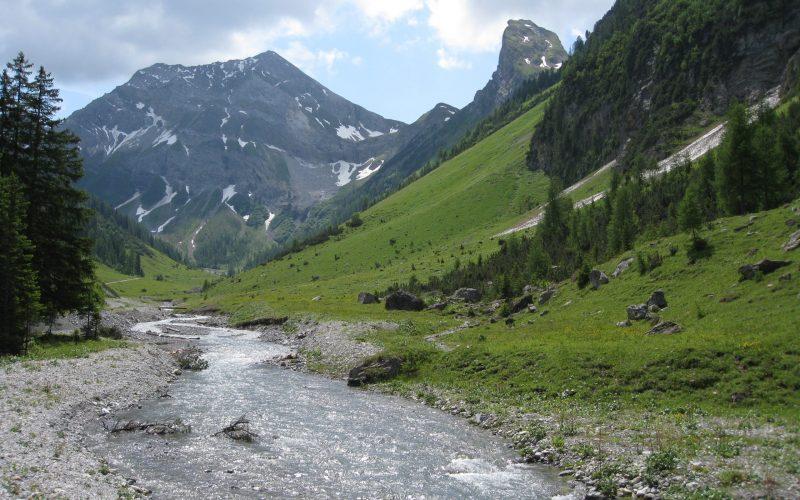 Natur mit Flussbett