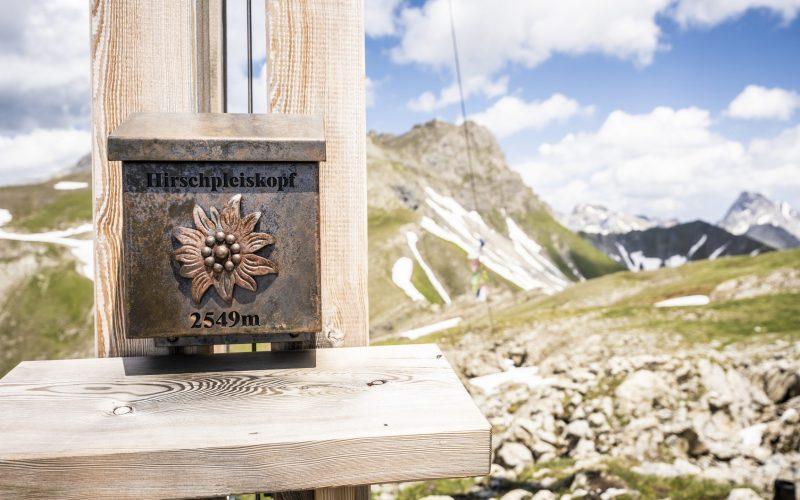 Hirschpleiskopf Gipfelkreuz